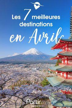 La Chine, le Brésil, Madagascar, le Costa Rica, le Japon, les Canaries ou encore Madère, il y a tant à découvrir ! Osaka, Costa Rica, Mont Fuji, Destination Voyage, Destinations, Avril, Tenerife, My Dream, Road Trip