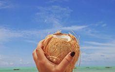 Eine frische Kokosnuss, der ideale Durstlöscher © Carina Dieringer Carina, Freundlich, Coconut, Fruit, Food, Mouth Watering Food, Essen, Meals, Yemek