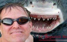 Uomo come lo squalo: possibilità di avere i denti rigeneranti Il tanto temuto pesciolino carnivoro ha un sistema di rigenerazione continua dei denti che non lo la
