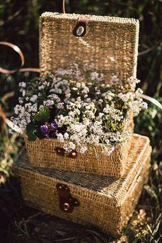 Beautiful baskets - Barn Owl Eye Candy