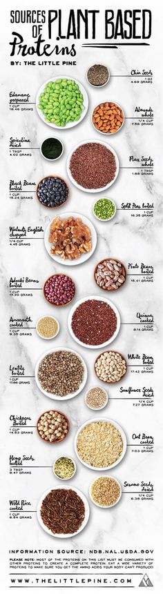 Best Sources of Plant Based Protein - Vegan Infographic. Topic: vegetarian, vegetables, diet, healthy eating, food. #ad