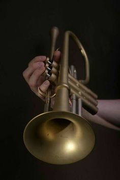 Elephant by lüttke - The elephant trumpet Music Pics, Art Music, Music Clipart, Trumpet Mouthpiece, Trumpet Music, Hurdy Gurdy, Trumpet Players, Strange Music, Ideas