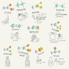 "sciencescribbles: "" Chapter 10.1 Fundamentals of Organic Chemistry - Part 3: Uses of organic molecules //Science Scribbles A-Level / IB Chemistry collection (Part 1 