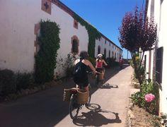 Cava Oriol Rossell en burricleta #enoturisme #penedès #oriolrossell #rutadelxató