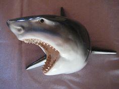 20 Best Shark Head Images