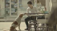 Bewonderenswaardig filmpje: haal het geluk uit de kleinste dingen