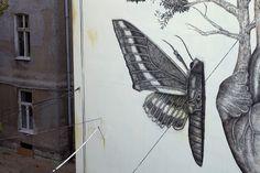 "New Mural ""Sentir"" by Alexis Diaz in Łódź, Poland | Hi-Fructose Magazine"