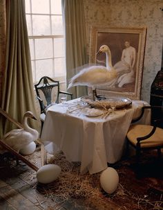 'Come to Dinner' by Tim Walker for Vogue Italia, May 2015.