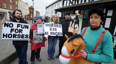 Hereford horse lovers protest horse racing .