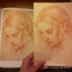 Copy after Andrea del Sarto in genuine red chalk. The original was on show at the Getty.  drawing art renaissance sketch sketchbook  sanguine red chalk  sanguine sanguinedrawing portrait old master copy  classicaldrawing classicalart luxury gifts interior design interior decor рисунок копия