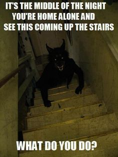 I would sit down on the steps and look at it as if I was fine with it.  When I was little and afraid of the dark I'd pretend to be a monster so they wouldn't get me.