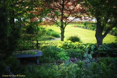 The gardens and glasswork of Oak Lawn Cheese Factory