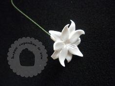 sombrero mejicano: Flores de azúcar módulo PME en La tienda Americana