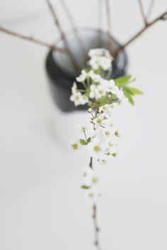 maisonsblanches:  ♫♫♫ via millasblaabertua.blogspot.de/