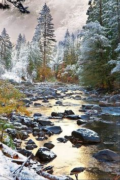 ✯ Beautiful Winter Creek