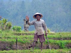 Bali I wish I could say that I came across Bali pouring over travel magazines, reading guide books and finding some fantastic historic story that enraptured my attention from a fellow traveler. But…