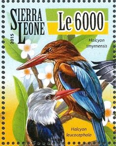 Známky: White-throated Kingfisher - Halcyon smyrnensis and Grey-hea… (Sierra Leone) (Kingfishers) Mi:SL 6521
