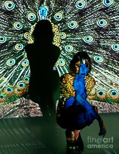 Utopia and the Everyday - Art project blog: Research - Types of projection installation art and methods