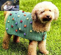 tejidos artesanales en crochet: crea una original capita moteada para tu perrito t...
