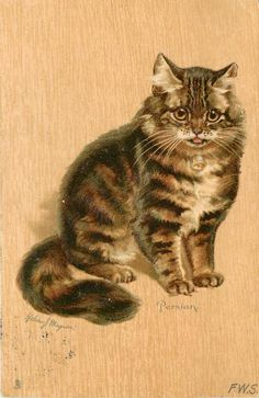 """""""Persian"""" ~ 1904 Postcard by Helena Maguire"""
