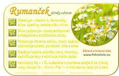 Info rumancek, harmancek, kamilka Aloe Vera, Medicine, Victoria, Jar, Fitness, Medical, Jars, Glass