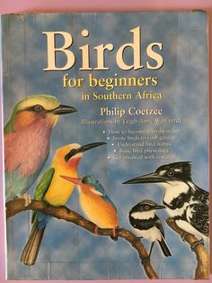 Birds For Beginners - Starting Our Nature Journals Nature Activities, Outdoor Learning, Forest School, Nature Journal, Nature Study, Walking In Nature, Physiology, Journals, How To Become