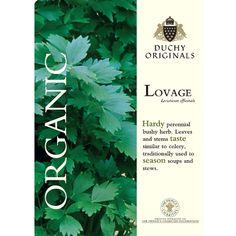 Lovage - Duchy Originals