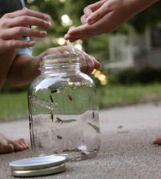 Fun nighttime activities for kids: Catch fireflies! Photo via Pioneer Settler