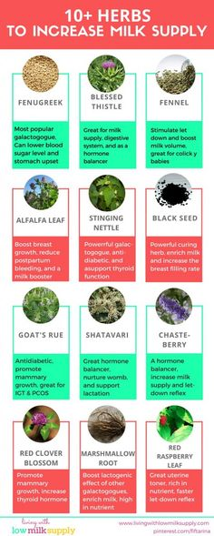 This infographic shows you 10+ herbs to increase milk supply. Each herb has a specific property that will boost your supply in certain way. Pin this!