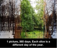 The description on this is slightly off. This picture is actually made up of 3888 images, each one pixel thick. More info: http://bit.ly/1cLf1OV Photo credit: Eirik Solheim