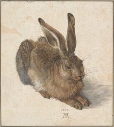 The Other Animals - Album on Imgur