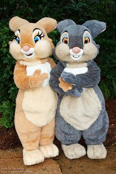 WDW Oct 2011 - Meeting Thumper and Miss Bunny | by PeterPanFan