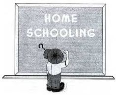 Homeschooling is becoming more and more popular in the United States especially in Florida, Illinois, Georgia, Texas, and California.