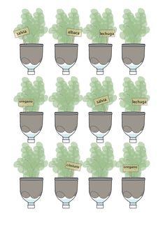 Macetas orgánicas de diario y huertos verticales con botellas de plástico.