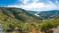 Het landschap in de Douro-vallei