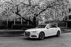 Nice Audi 2017: 2017 Ibis White Audi A4 | Audi Seattle | Seattle, WA | audiseattle.com... Car24 - World Bayers Check more at http://car24.top/2017/2017/01/08/audi-2017-2017-ibis-white-audi-a4-audi-seattle-seattle-wa-audiseattle-com-car24-world-bayers/