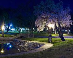 ellis lake Photos marysville california -home California Dreamin', Northern California, Marysville California, Yuba City, Grass Valley, Lake Photos, Nevada City, Central Valley, Unique Gardens