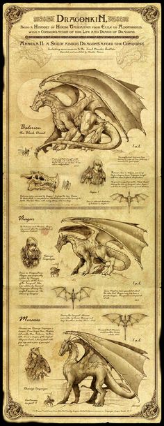 Balerion, Meraxes and Vhagar - Game Of Thrones Dragons