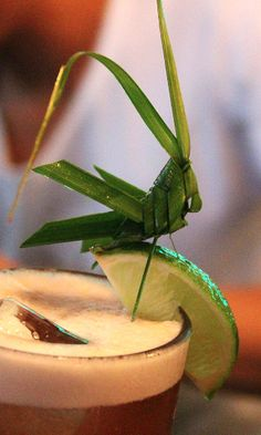 Grasshopper garnish