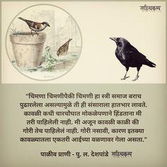काऊ चिऊतला स्त्री समाज 😂 पाळीव प्राणी - पु. ल. देशपांडे . . . . . . . #marathiwriter #marathilekhak #marathisahitya #pldeshpande #puladeshpande #pula #पुलदेशपांडे #humour #funny #oneliners #marathicouple #couplegoals #couple #malefemale #joke #readbooks #writerofindia #instaposts Indian Literature, Pula, Insta Posts, Couple Goals, Books To Read, Jokes, Funny, Animals, Humor