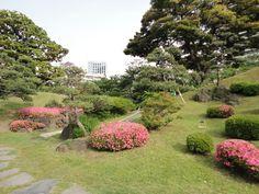 rikugi-en garden Tokyo