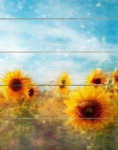 would be so cool on a little wall in a sunflower themed bathroom :) Sunflower Garden, Sunflower Art, Sunflower Bathroom, House Painting, Painting On Wood, Vincent Van Gogh, Into The Fire, Found Art, Annual Plants