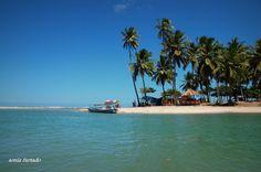 Todos os tamanhos | Lagoa de #Jequiá |in Brazil (Estado de Alagoas) Flickr – Compartilhamento de fotos!