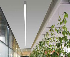 terasz? -- Products System Lighting Log Out MOLTO LUCE