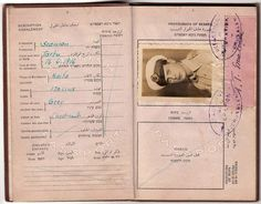 American Passport Template  Google Search   The Dust Of Daily