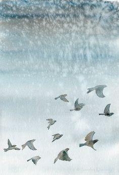 flying birds watercolor - Google-søgning