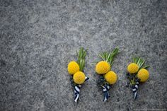 Yellow Blue Boutonniere by Liza of LovelyGirls Events - Delaware Wedding (craspedia and privet berry)