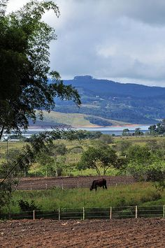 General View. Darién, Colombia