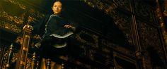 The Grandmaster (2013) DP: Philippe Le Sourd