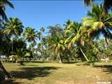 Best places for camping in Puerto Rico   Parque Nacional Tres Hermanos The Tres Hermanos National Park is a vacational center manager by the Compañía de Parques Nacionales de Puerto Rico. It has a beach ...